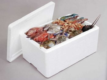 Benefits of EPS Cooler Boxes for Your Business