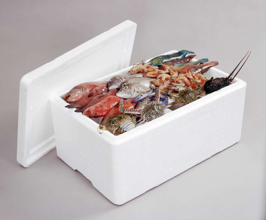 EPS Foam Fish Boxes